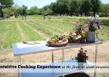 Intuitive Cooking Experience at The Farm