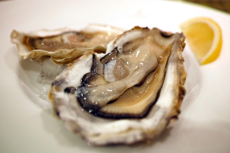 Oysters: Foods that help to ease anxiety