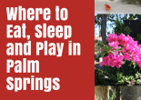 PhoenixBItes Palm Springs Travel Guide