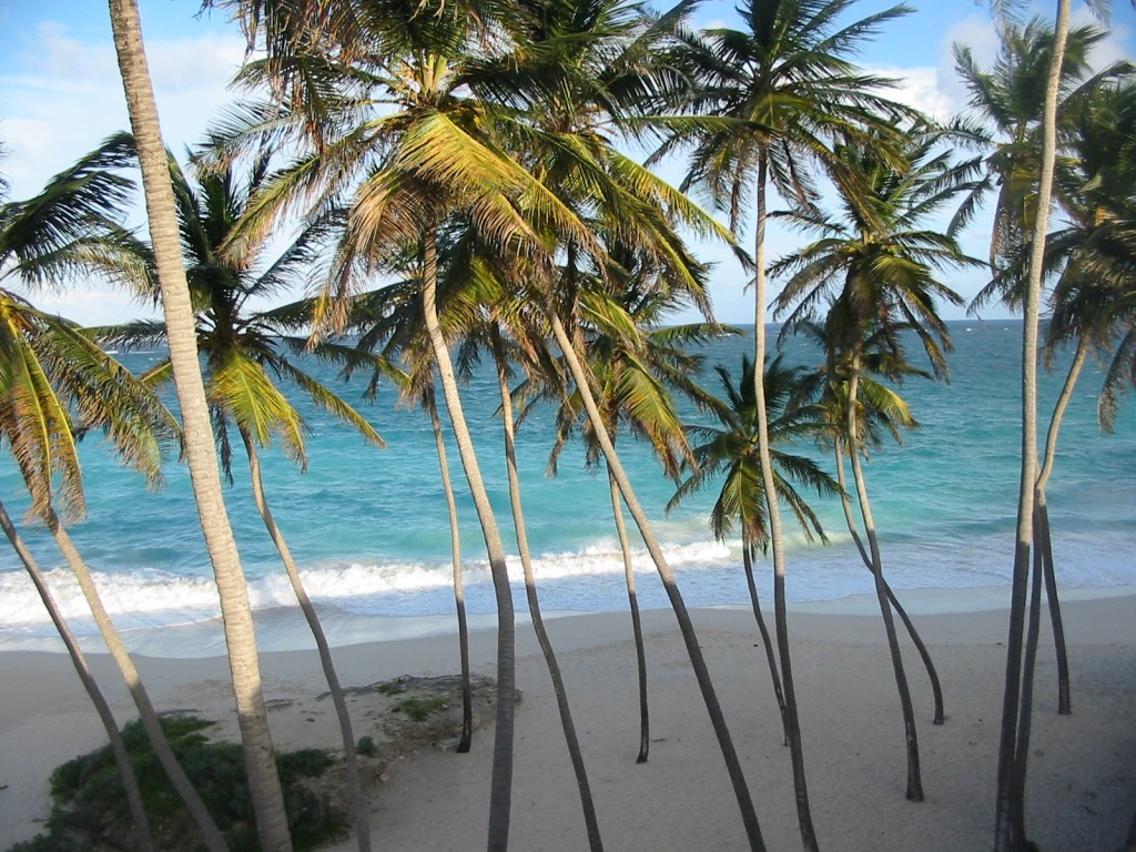 Barbados Bottom Beach