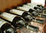 ACI Wine Tasting Flight School