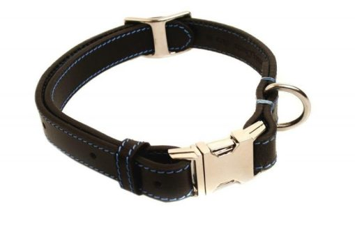 phoenix charm premium leather adjustable side release dog collar