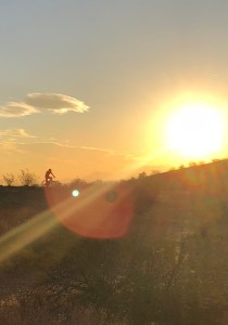 Photo of mountain biker silhouetted on a mountain in the sunset