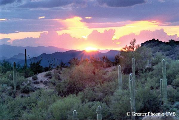 Phoenix_Sonoran_Desert_Sunset