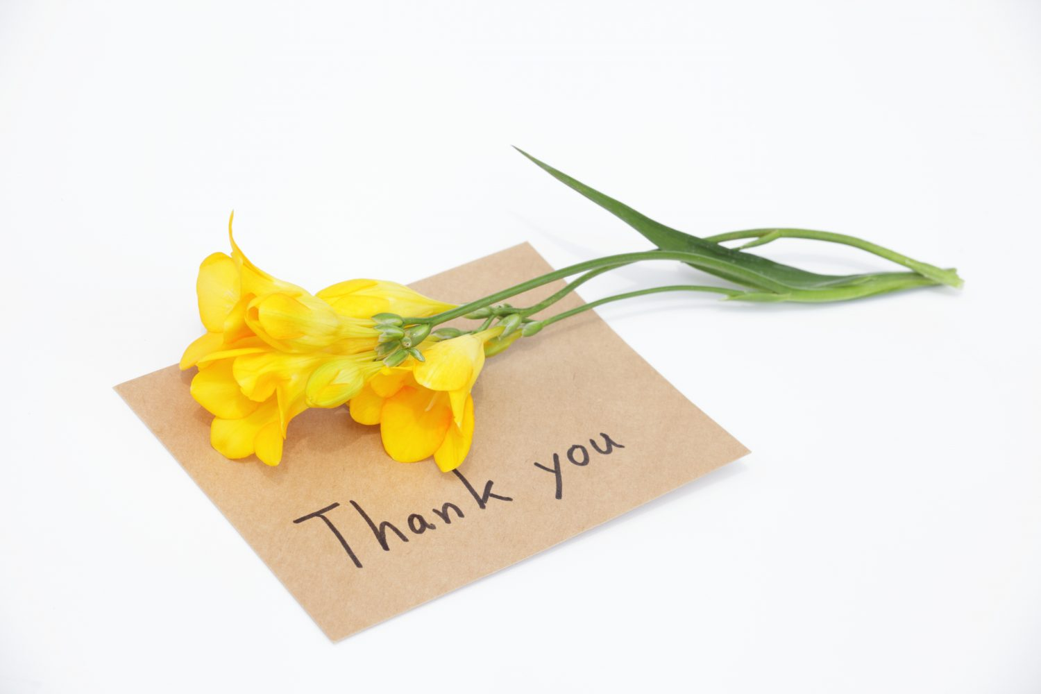 Holiday Thank you & Special Offers