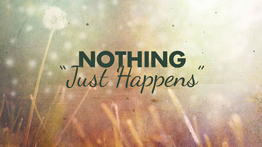 Nothing Just Happens:  Duane W.H. Arnold, PhD 1