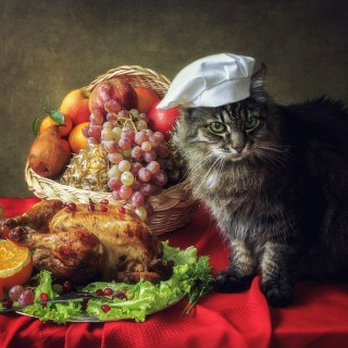Happy Thanksgiving 14