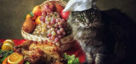 Happy Thanksgiving 1