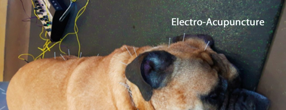 Acupuncture, Electro
