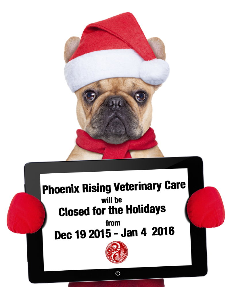 Phoenix Rising Veterinary Care, Regenerative Medicine, holiday hours