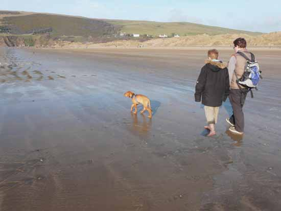 """Striding on with Fred and Ad on an """"overcrowded"""" beach."""