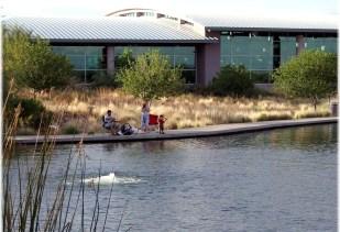 gilbert-library-on-lake