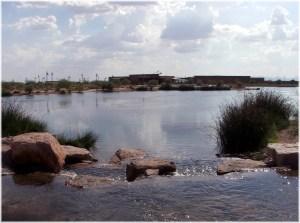 veterans-oasis-fishing-lake