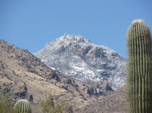 Sabino Canyon 009