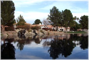 Waterfront Homes for sale in Pecos Ranch Chandler Arizona