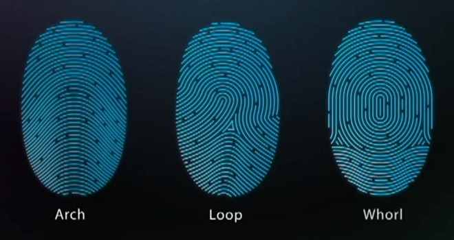 Apple Touch ID Fingerprint Types