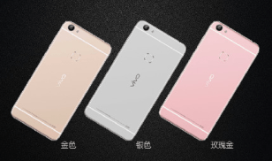 Vivo X6 Colors