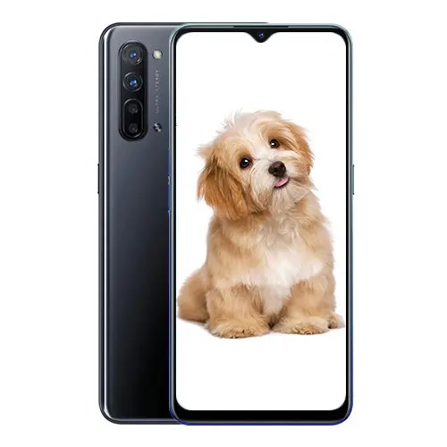 OPPO Reno 3 front Display and Black back