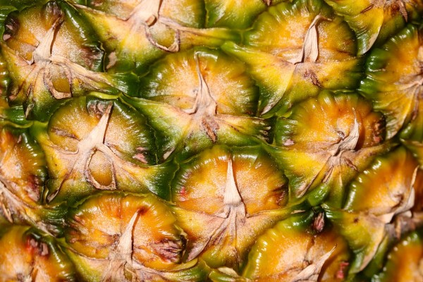 Pineapple with Sharp Contrast
