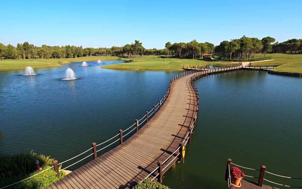 Bridge over Artificial Pond