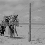 1953年 佐伯義勝 《石川,内灘村,射爆場》