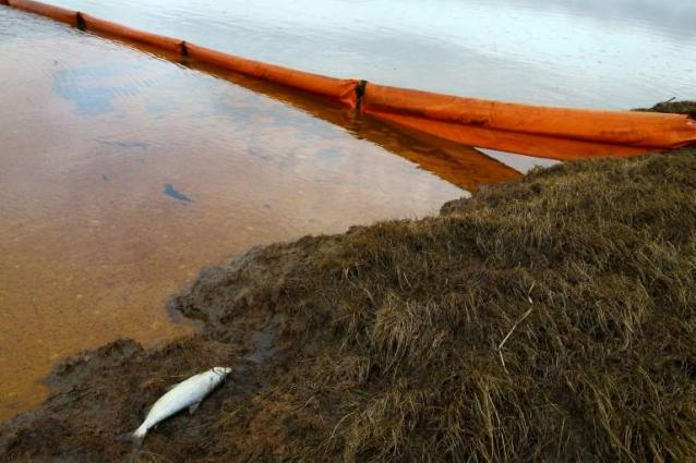 Petroleum Concentration in Russia's Ambarnaya River Nearly Doubles After Norilsk Spill