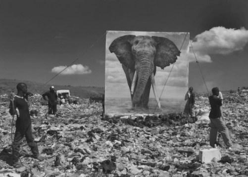 nick brandt photographie noir et blanc