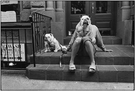 chien d'Eliott Erwitt