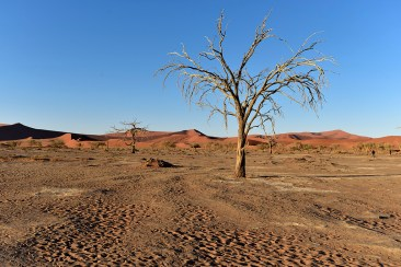 Namibie-A1 359