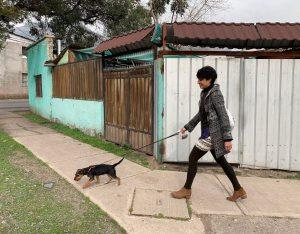 Monse walking Pitu, Santiago, Chile ©2019, Cyndie Burkhardt