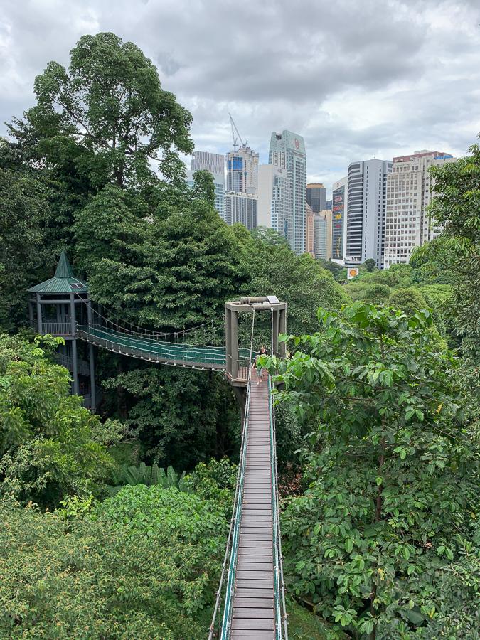 KL Forest Eco Park, Kuala Lumpur, Malaysia, ©2020, Cyndie Burkhardt.