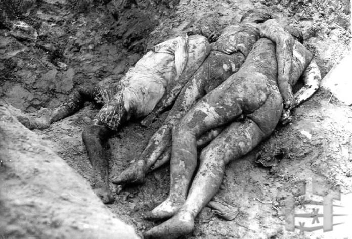 Тіла жертв Янівського концтабору
