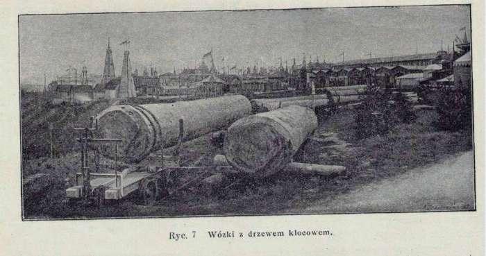 Стовбури під сваї і для будівництва павільйонів виставки. Фото до 1894 року