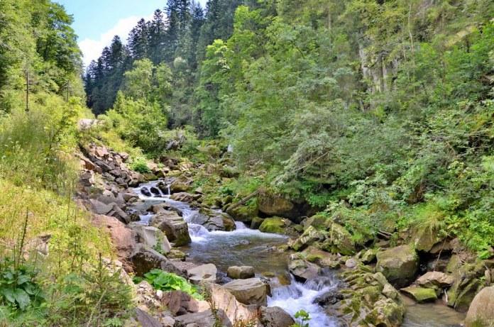 """Національний природний парк """"Сколівські Бескиди"""". Фото: panoramio.com"""