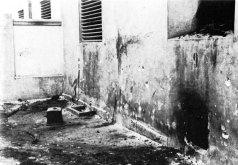 У Бриґідках – місце проведення розстрілів. Темні плями на стіні – сліди крові; також видно на стіні сліди рикошету куль