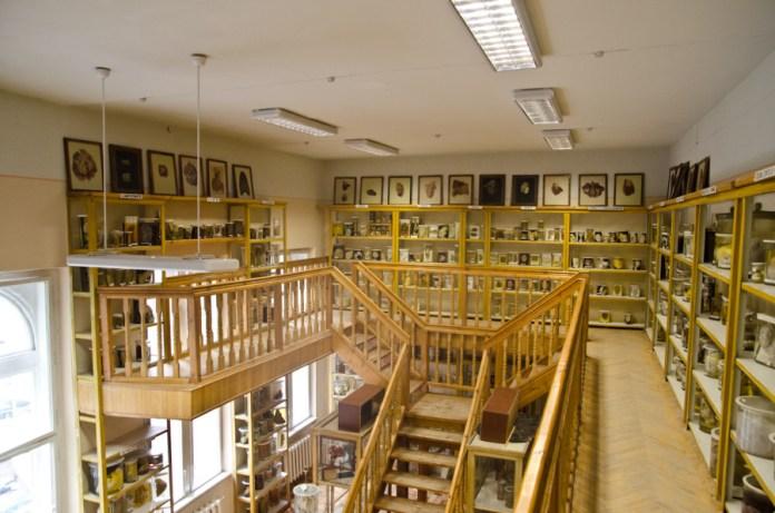 Музей хвороб людини, загальний вигляд.