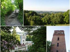 Майже літня прогулянка на Кайзервальд