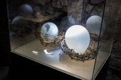 Сучасні експонати музею скла