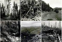 Погляд на Маківку з-за лінії фронту на весні 1915-го року. 38 унікальних фото