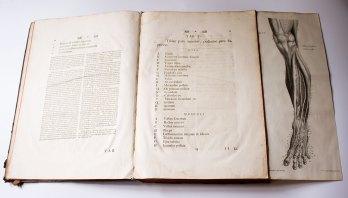 Книга Альбрехта фон Галера «Iconum anatomicarum quibus aliquae partes corporis humani delineatae continentur. Fasciculus V. Arteriae pedis», видана у 1752 році.