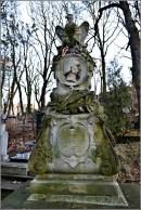 Памятник В. Лозінському на Личаківському кладовищі (фото Тетяна Жернова 2015р)