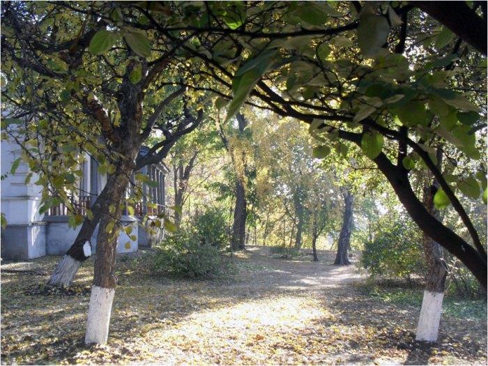 Сад на території Полтавського літературно-меморіального музею В. Г. Короленка