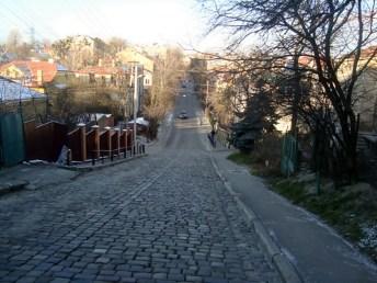 Вигляд на вулицю зі спуску Шумського-Цегельського, 2015 рік
