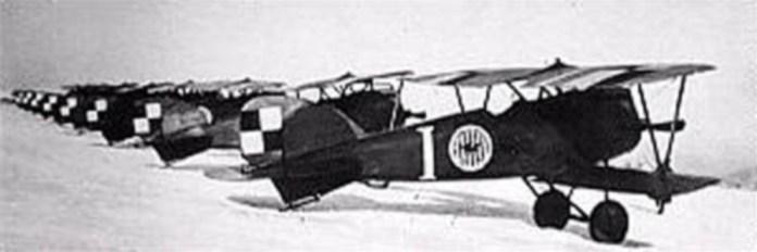 Літаки ескадрильї Костюшки, на одному з котрих і загинув Едмунд Грейвс. Фото 1919 року