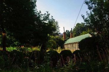 Теплиця старого корпусу ботанічного саду