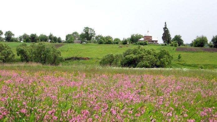 Вид на стависько і монастирище від Іванової греблі