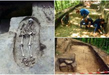 Пліснеський археологічний комплекс: вчора, сьогодні, завтра…