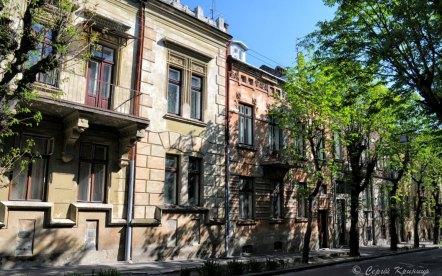 Львів, кам'яниці №22 та №20 на вул. Вишенського