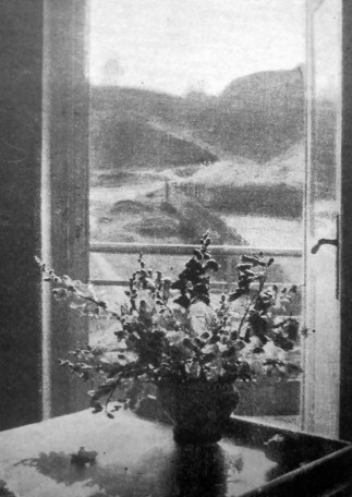 Галя Левицька. З мого вікна, поч. 1930-х рр. (Світло й Тінь. – 1934. – Ч. 3)