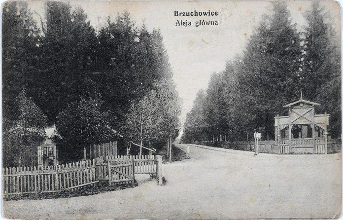 Брюховичі, головна алея. Фото 1913 року